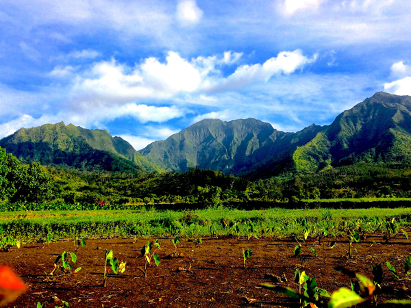 Beautiful mountains in the Hanalei Valley on Kauai, Hawaii